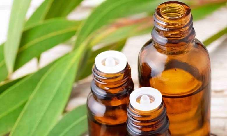 بخور اکالیپتوس برای تسکین و درمان سینوزیت