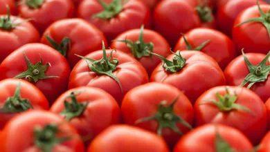 خاصیت گوجه فرنگی
