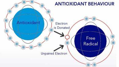آنتی اکسیدان چیست
